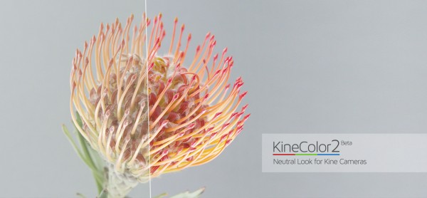 kinecolor